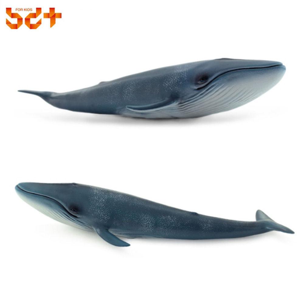 반디 (소프트 애니멀) 흰수염 고래